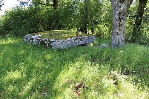 Assier - Dolmen du Bois des Boeufs
