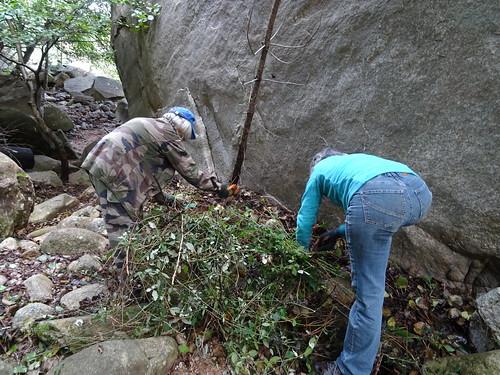 Travaux d'aménagement derrière le rocher basculé