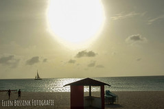 Eagle Beach Aruba sunset