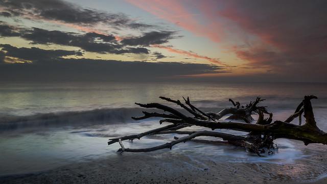 Covehithe Suffolk