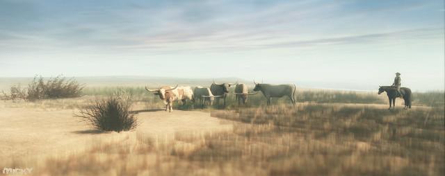 Marlboro Country