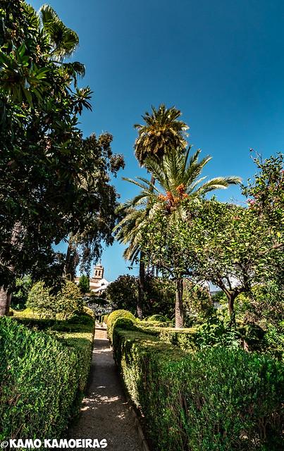 palacio de viana,jardines