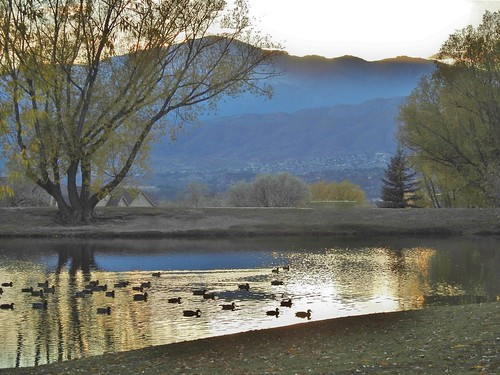 briargate janeelizabethlazarz walkingcolorado nikon p900 nikonp900 coloradosprings colorado janelazarz photographybyjanelazarz breathtakingcolorado fallseason fallfoliage leaves fallcolors reflectionpond trees reflection water pond lake mountains blue gold
