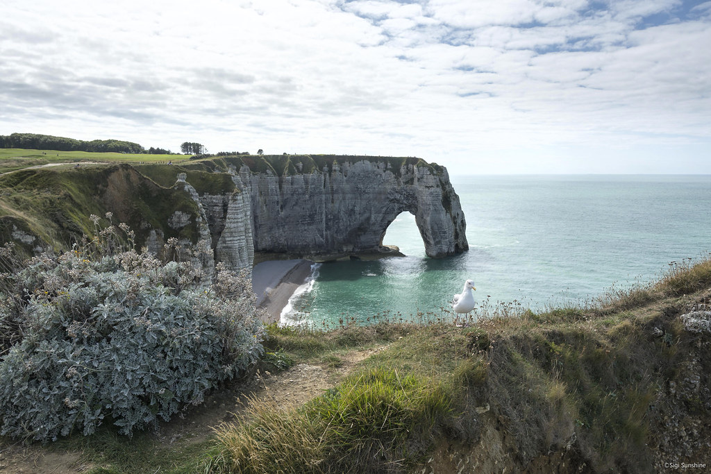 Falaises D Etretat Normandie Sigi Sunshine Flickr