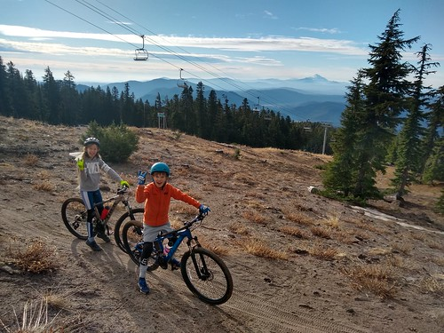 MTB'ing the Timberline to Town Trail