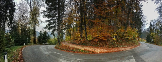 Autumn forest panorama with road in Tyrol, Austria