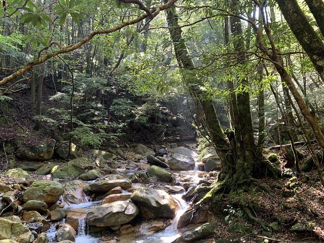 Kyushu hiking, Japan 2019 92