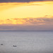 Killer whales in tonight's sunset!