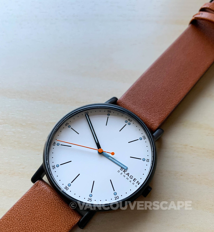 Skagen Signatur watch