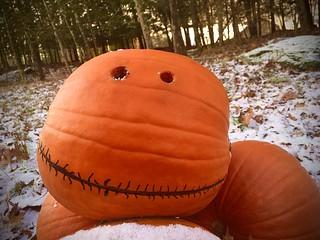Rupert I Pumpkin