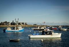 Rye Harbor in November