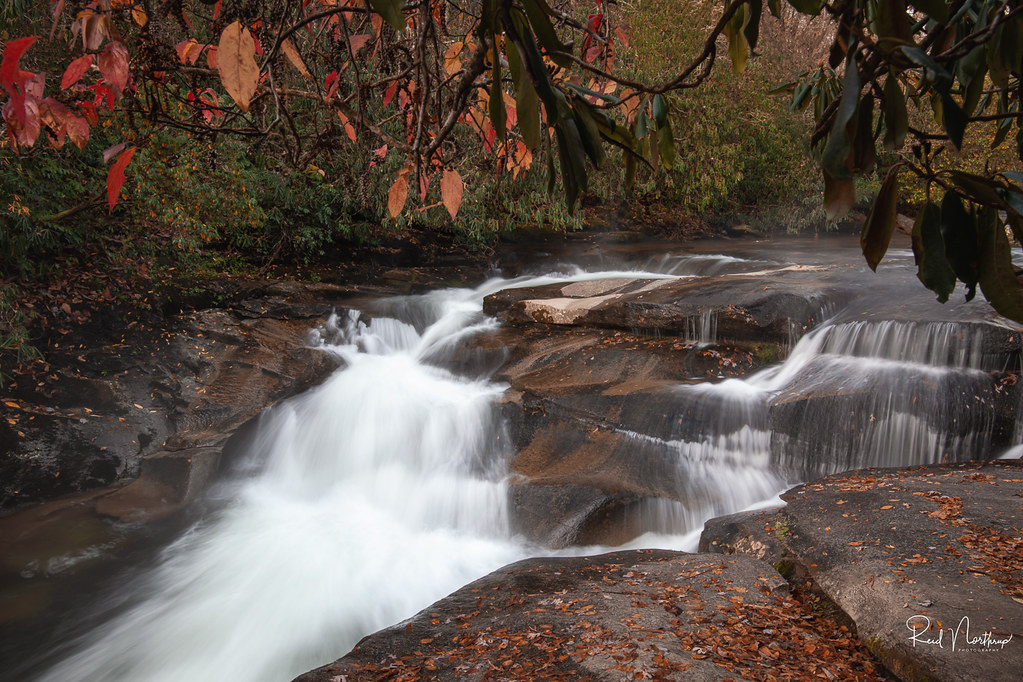 Chilly Pisgah Forest Cascade