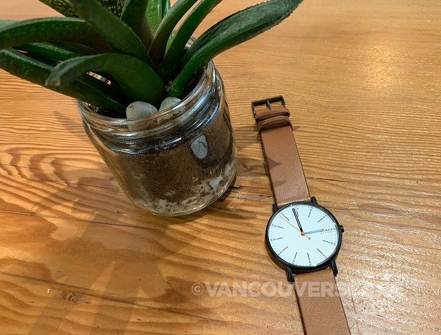 Skagen Signatur watch-3