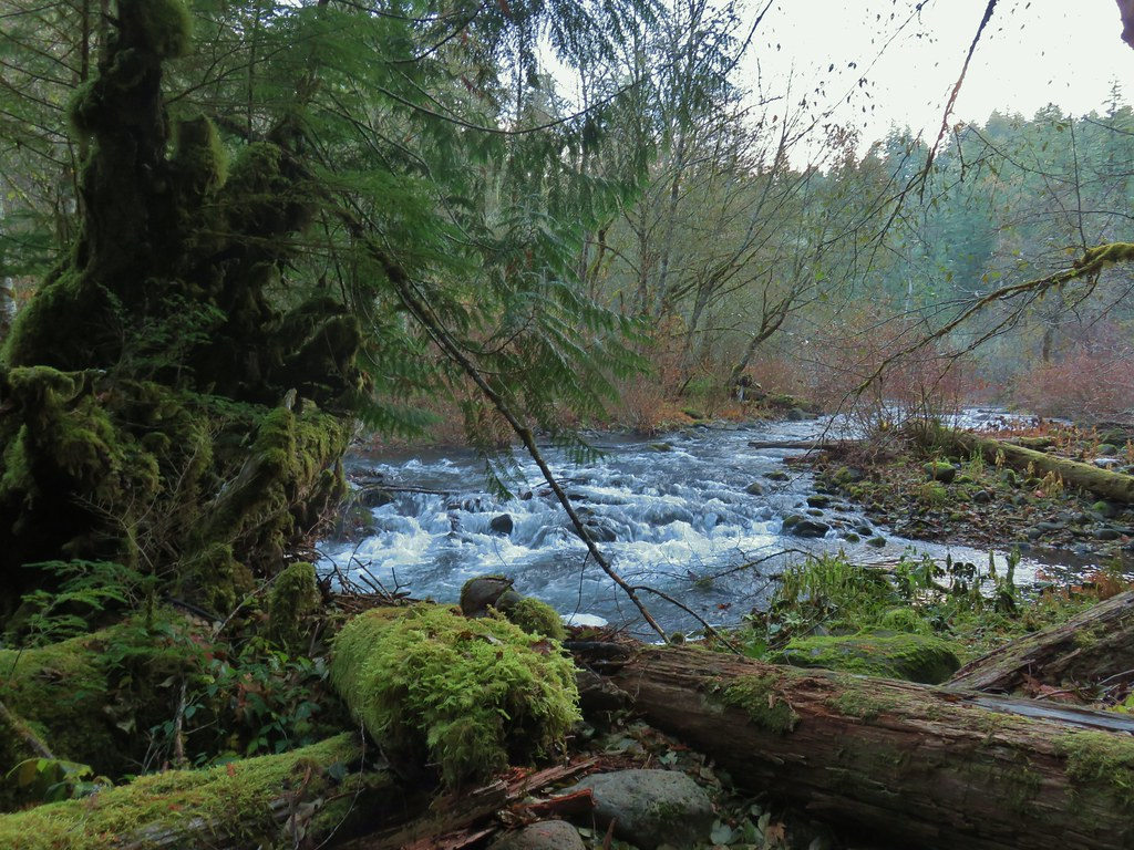 Oak Grove Fork Clackamas River