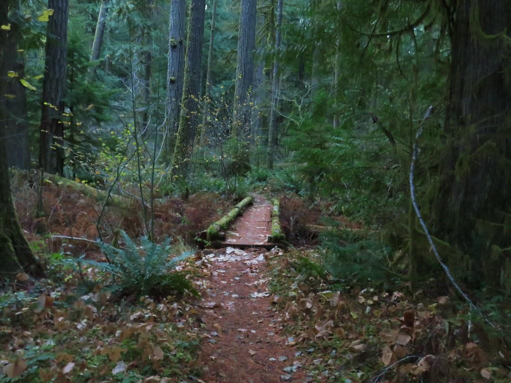 Alder Flat Trail