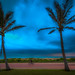 Overcast Durban Days_ (2)