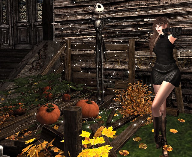 Luxe Paris and TM Creations... watching the pumpkins grow and looking hawt