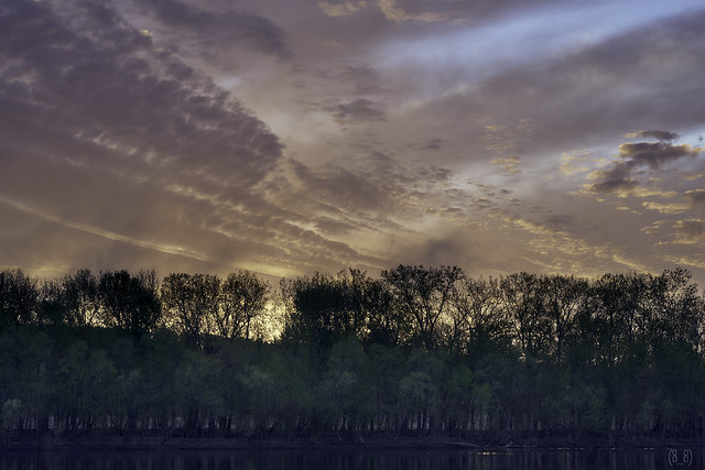 Spring Sunrise (6254) 3
