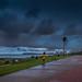 Overcast Durban Days_ (4)