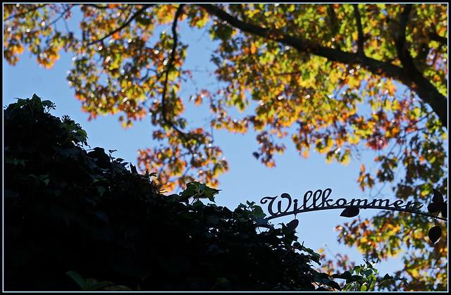 💙🌻🍂🌻💗 Herbstliche Einladung 💗🌻🍂🌻💙