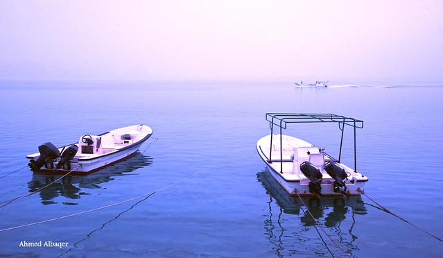 Foggy sea morning ... صبــاح و بحـــر و ضبــــاب