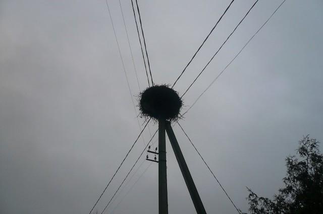 P1720276
