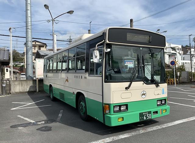 Nara, Japan 2019 58