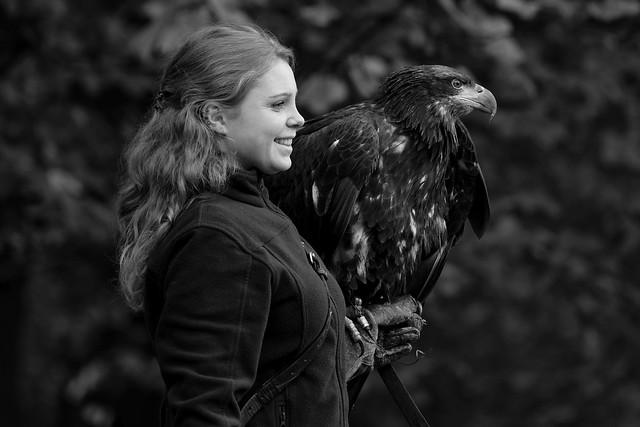 The Eagle | Friends 'n Fellows
