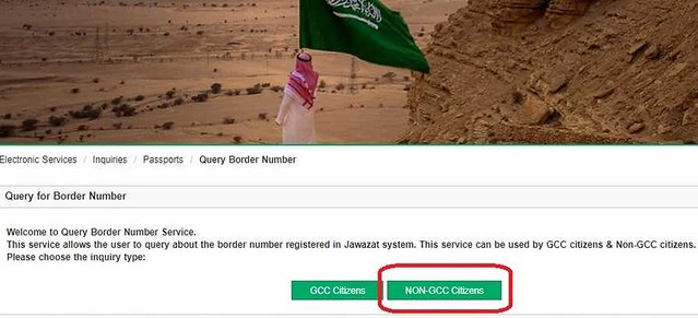 295 How to check Border Number online in KSA 01