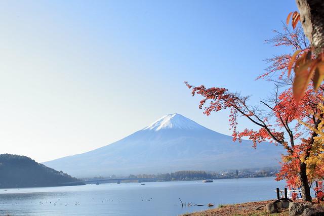 Lake Kawaguchi and Mt. Fuji in autumn