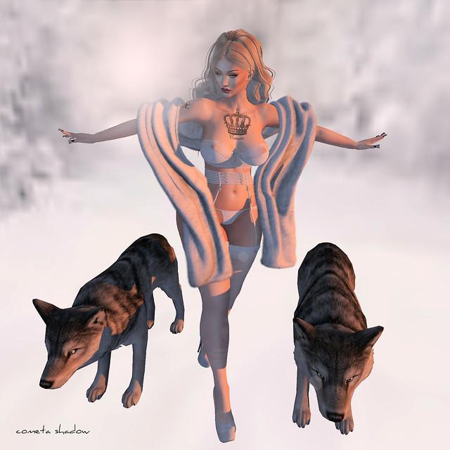 ❤ WOLF