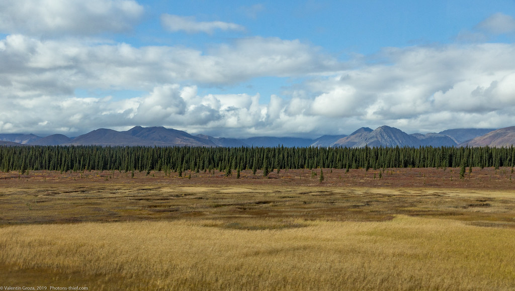 Denali NP 38 from bus 02 med (1 of 1)