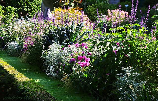 Botanic garden (Kruidtuin) Leuven