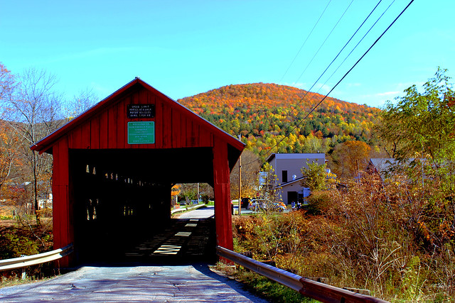 Station Covered Bridge