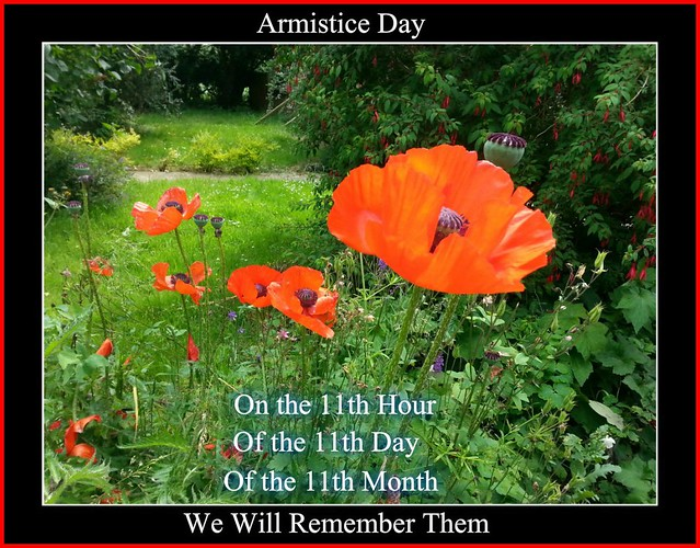 Composition for Armistice Day ...