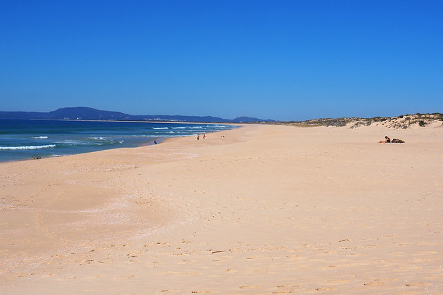 Comporta beach, Alentejo, Portugal