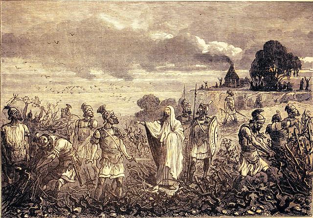 Estirpazione dei vigneti della Gallia in seguito dall'editto dell'imperatore Diocleziano