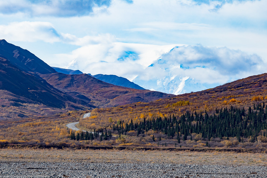 Denali NP 16 road to Denali 01 med (1 of 1)