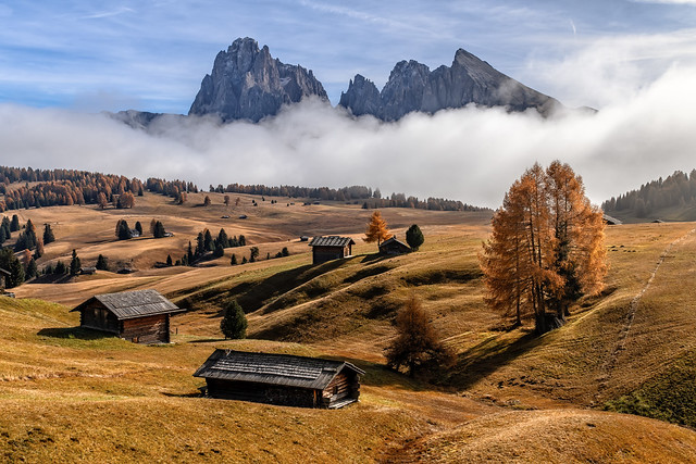 Foggy autumn day in the Dolomite Alps