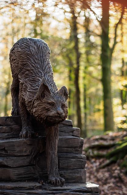Wild Cat carving
