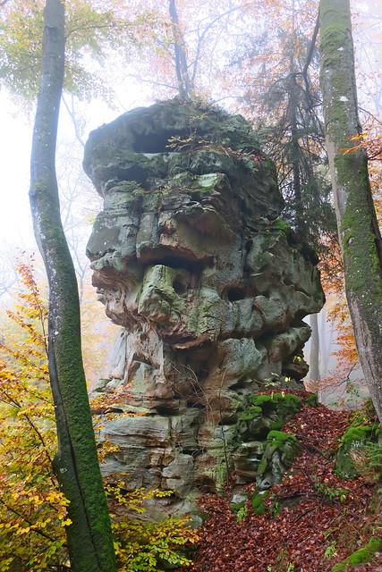 Der Wald der versteinerten Monster
