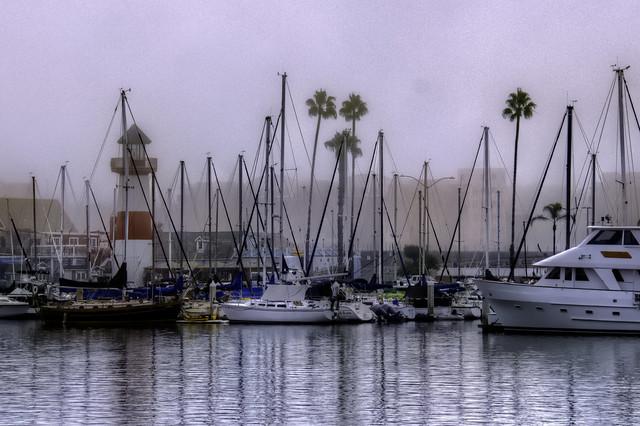 Foggy O'Side Harbor 13-11-7-19