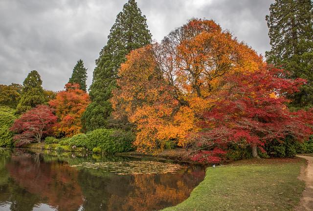 Autumn prime