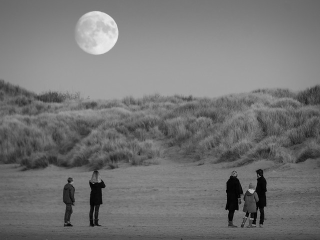 Looking back at the moon B&W