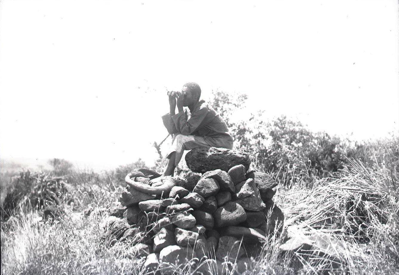 608. Гамо. Охота Атто Мариам высматривает слонов