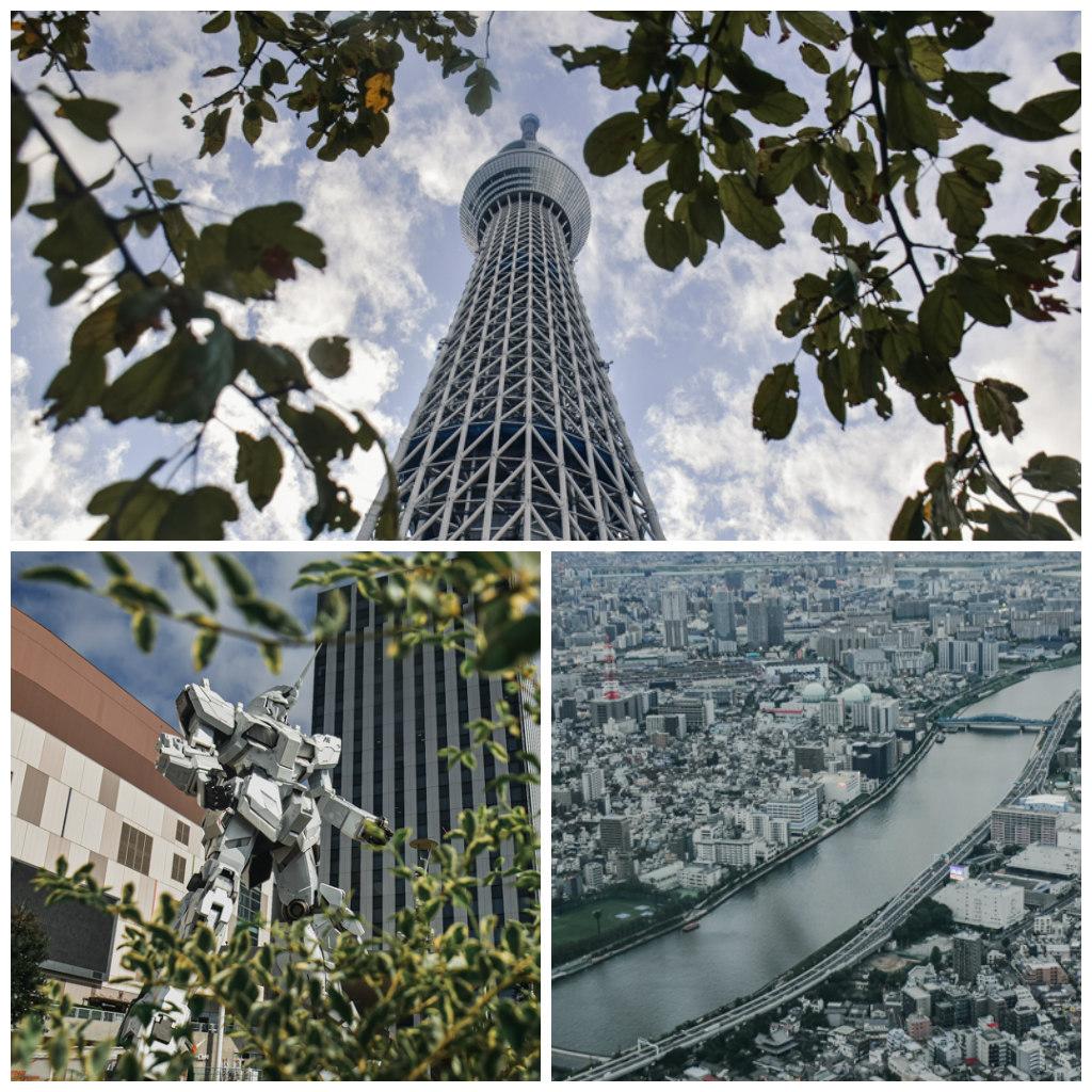 HOKURIKU TOKYO 2