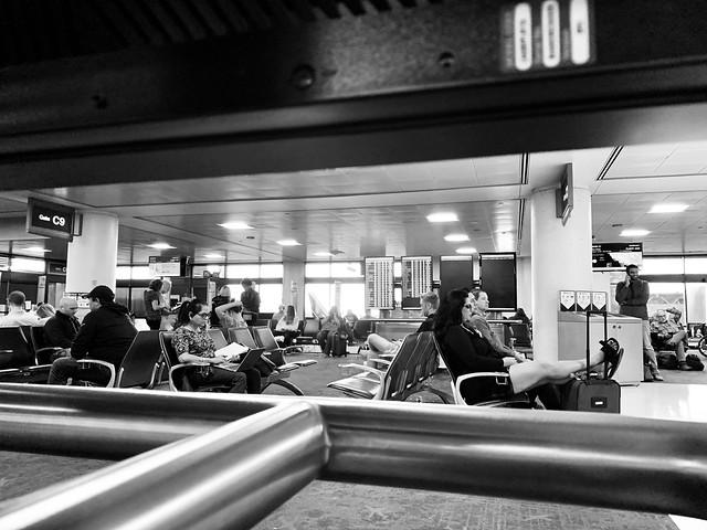 Terminal View, PHX Terminal 4