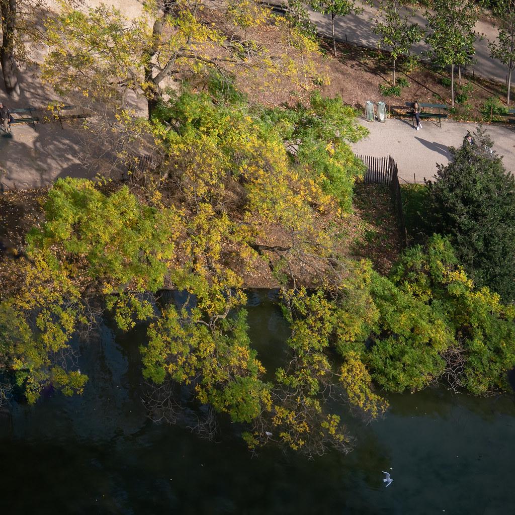 Lumières d'automne sur les Buttes Chaumont... 49045389201_cdb7a07d6f_b