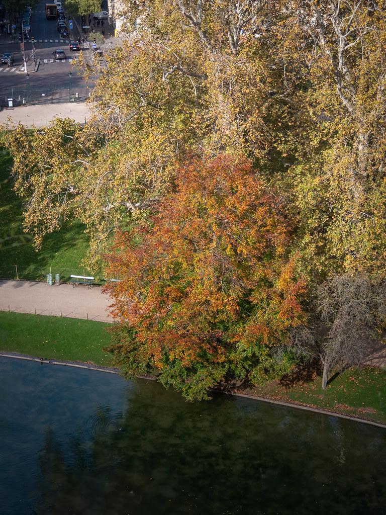 Lumières d'automne sur les Buttes Chaumont... 49045407536_d173ca6cac_b