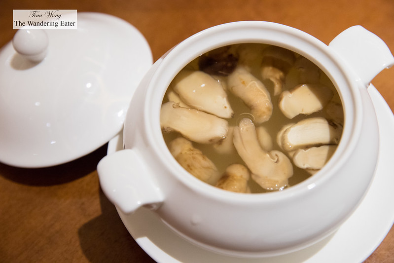 Chicken and Matsutake mushrooms soup from Yunan